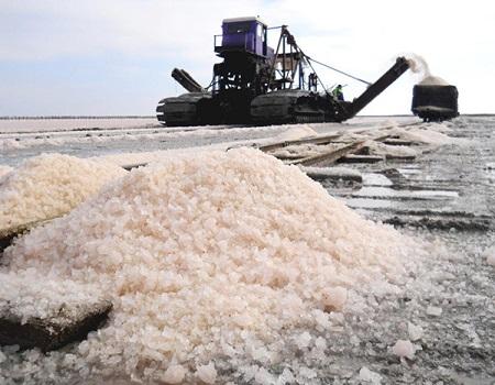 Соль техническая с доставкой