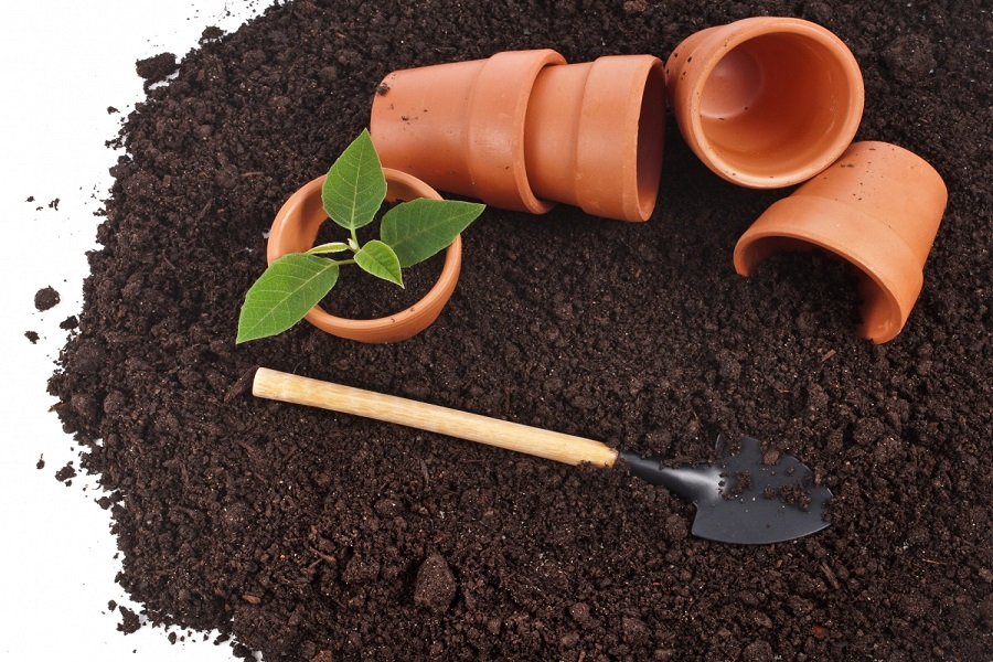 Какой же грунт для садовых растений?