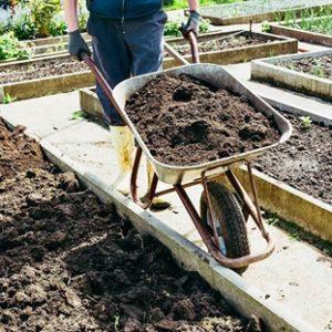 В каких случаях спасает плодородный грунт для рассады